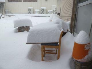 すごい雪.jpg