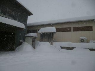 またまた すごい雪.jpg